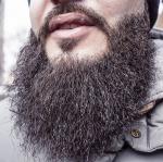 scraggly beard - beard-698509_1920 - pixabay